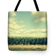 Cornfield In Missouri  Tote Bag