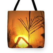 Cornfield Sunset Tote Bag