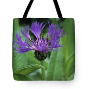 Cornflower Purple Surprise V2 Tote Bag