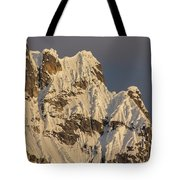 Cornices On The Rooster Comb Tote Bag