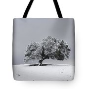Corral Hollow Tree In Snow Tote Bag