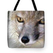 Corsac Fox- Vulpes Corsac 02 Tote Bag
