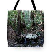 Corte Madera Creek Tote Bag
