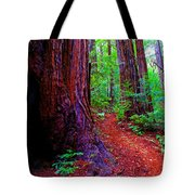 Cosmic Redwood Trail On Mt Tamalpais Tote Bag