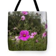 Cosmos Flower Tote Bag