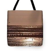 Costa Rica 040 Tote Bag
