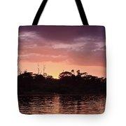 Costa Rica 052 Tote Bag