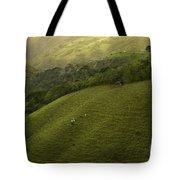 Costa Rica Pasture Tote Bag