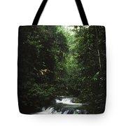 Costa Rica Waterfall In The Carocavado Tote Bag