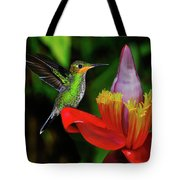 Costa Rican Hummingbird Tote Bag