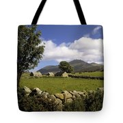Cottages On A Farm Near The Mourne Tote Bag by The Irish Image Collection