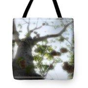 Cotton Ball Tree Tote Bag