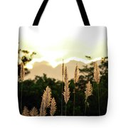 Cotton Candy Sunset 2 Tote Bag