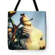 Cotton Field 13 Tote Bag