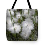 Cottongrass Tote Bag