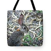 Cottontail Rabbit 4320-080917-1 Tote Bag