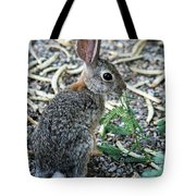 Cottontail Rabbit 4320-080917-2cr Tote Bag