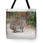 Cottontail Rabbit Surprised To Have Company Tote Bag