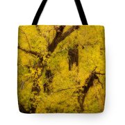 Cottonwood Fall Foliage Colors Abstract Tote Bag