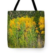 Cottonwood Pass Gold Viii Tote Bag