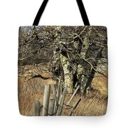 Cottonwood Stand Tote Bag