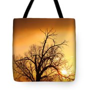 Cottonwood Sunrise - Vertical Print Tote Bag