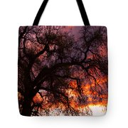Cottonwood Sunset Silhouette Tote Bag
