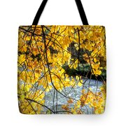 Cottonwood Tree Along The River Tote Bag