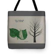 Cottonwood Tree Id Tote Bag