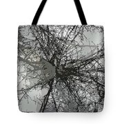 Cottonwood Tree Montage Tote Bag