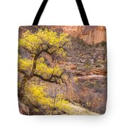Cottonwood Tree With Vibrant Autumn Colour, Zion National Park, Utah Usa Tote Bag