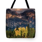 Cottonwoods Fir Trees Fall Color Grand Tetons Nat Tote Bag by Dave Welling