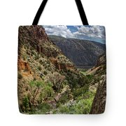 Cottonwoods In The Canyon Tote Bag