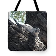 Cougar Immitation Tote Bag