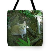 Cougar In The Woods Tote Bag