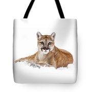 Cougar On White Tote Bag