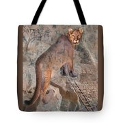 Cougar Rocks, Southwest Mountain Lion Tote Bag