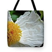 Coulter's Matilija Poppy In Rancho Santa Ana Botanic Gardens, Claremont-california  Tote Bag