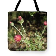 Coulter's Thistle Tote Bag