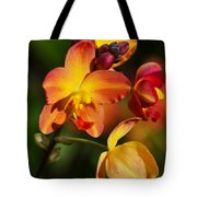 Count Your Blessings Tote Bag by Melanie Moraga