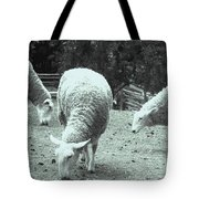 Counting Sheep Tote Bag