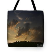 Counting The Sheep Before Sleeping Tote Bag