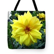 Country Dahlias Tote Bag