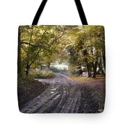 Country Lane In Autumn 4 Tote Bag