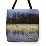 Country Living Eh Tote Bag