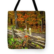 Country Road In Autumn Forest Tote Bag