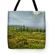 Country Roads Tote Bag
