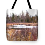 Country Winter 11 Tote Bag
