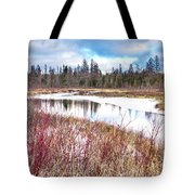 Country Winter 12 Tote Bag