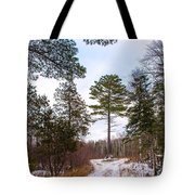Country Winter 14 Tote Bag